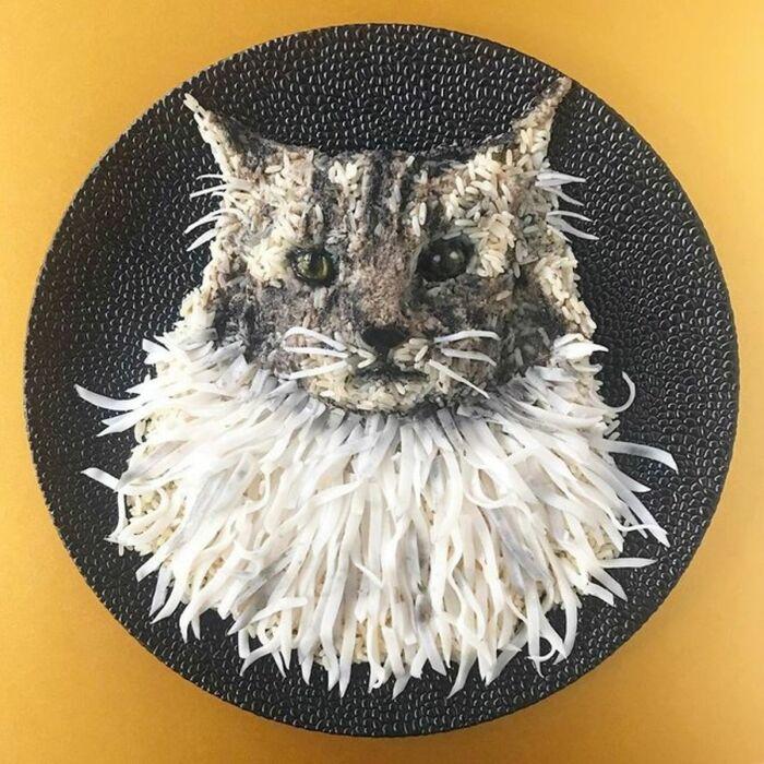 Кот. \ Фото: lematin.ch.