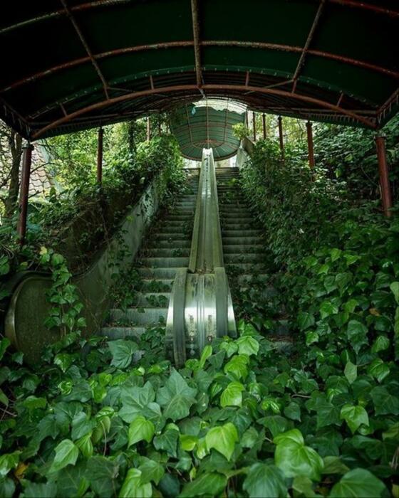 Заброшенный эскалатор. \ Фото: google.com.ua.