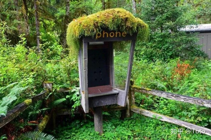 Заброшенная телефонная будка. \ Фото: zhuanlan.zhihu.com.