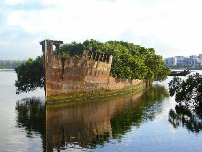 102-летний заброшенный корабль, Сидней, Австралия. \ Фото: yenisafak.com.