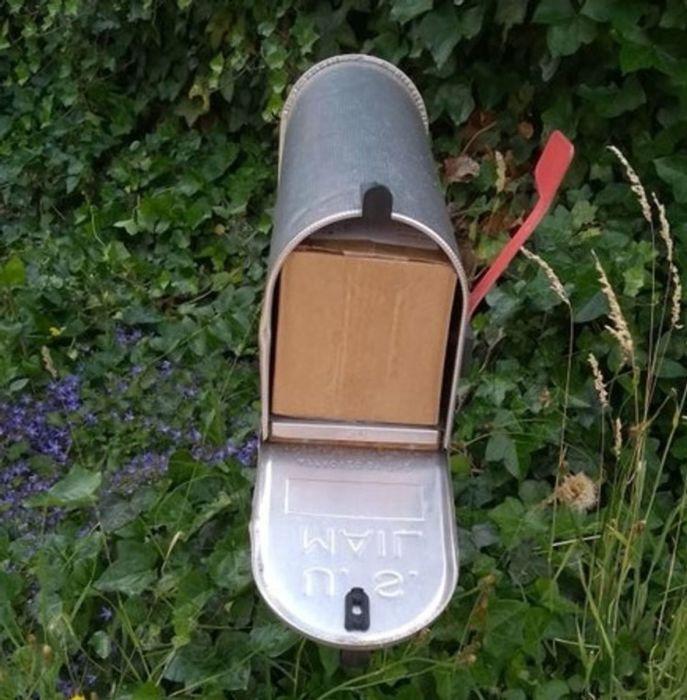 Почтальон Печкин принёс посылку для вашего мальчика, но никого не оказалось дома... \ Фото: incrivel.club.