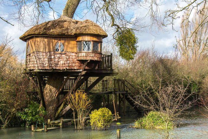 Удивительные дома на деревьях.