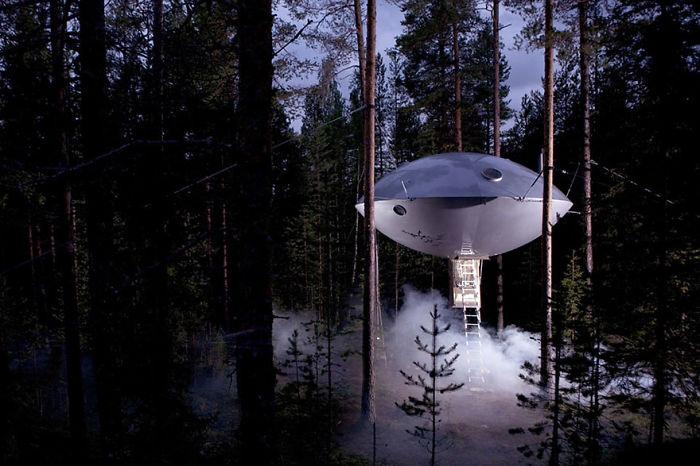 Этот небольшой отель на дереве напоминает собой корабль пришельцев.
