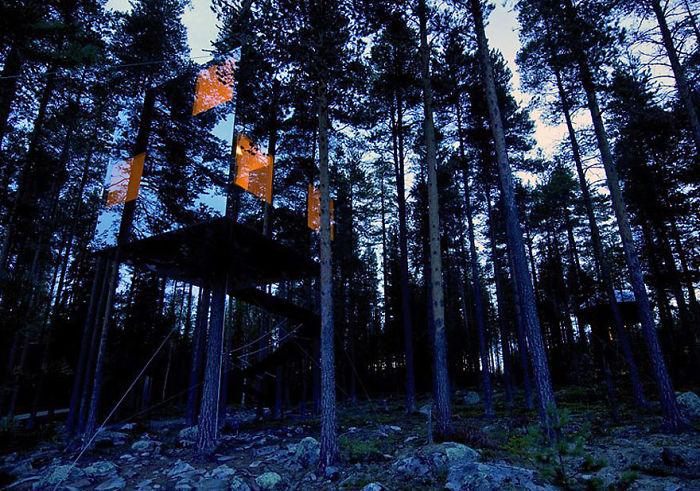 Удивительный стеклянный дом на дереве.