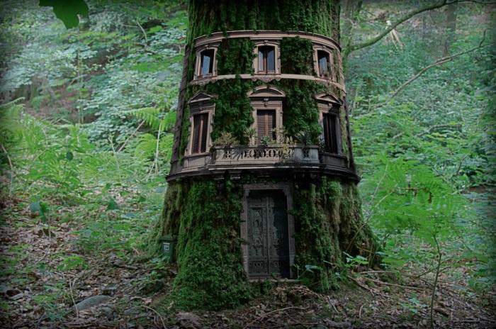 Симпатичный дом в стволе дерева.