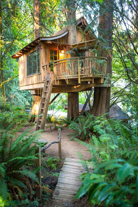 Невероятно уютный и комфортный дом на дереве.