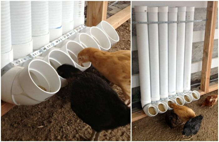 Идеальное решение для кормушки. \ Фото: pinterest.com.