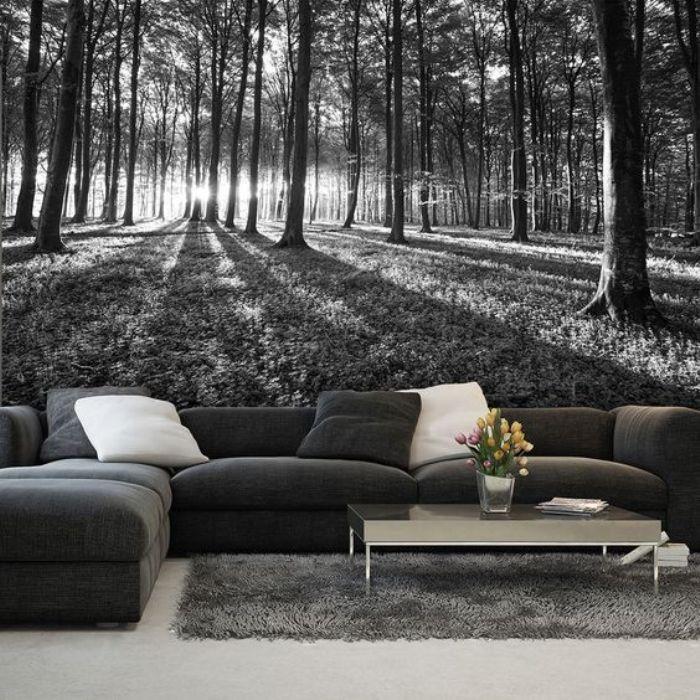 Фотообои в чёрно-белой цветовой гамме подойдут для тех, кто предпочитает классику или минимализм.