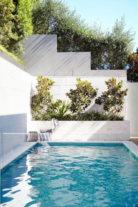 Грамотное озеленение позволит выгодно преобразовать пространство вокруг бассейна.