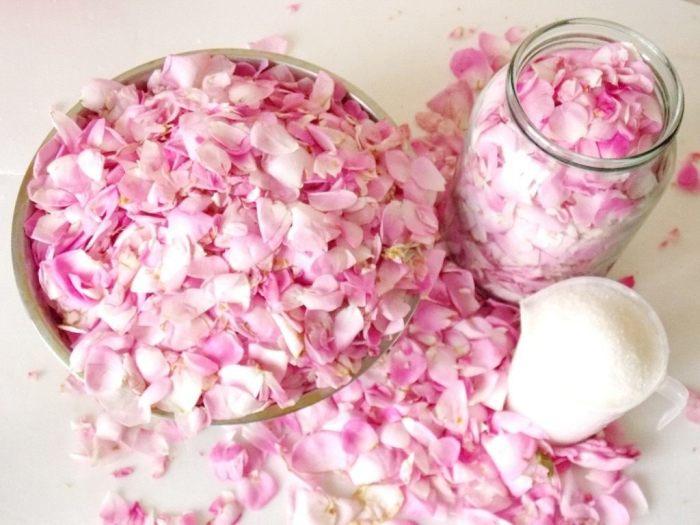 Лепестки роз. \ Фото: botanichka.ru.