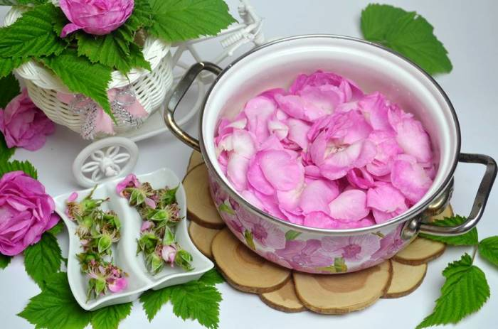 Чайная роза. \ Фото: pinterest.ru.