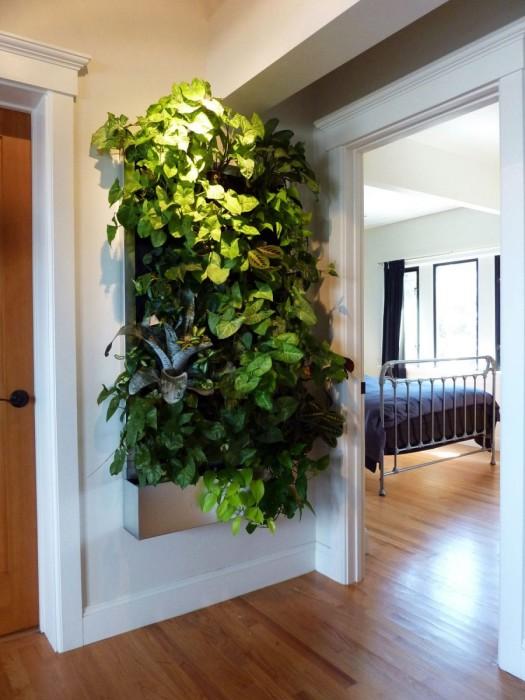 Панно из живых растений – прекрасный элемент декора.