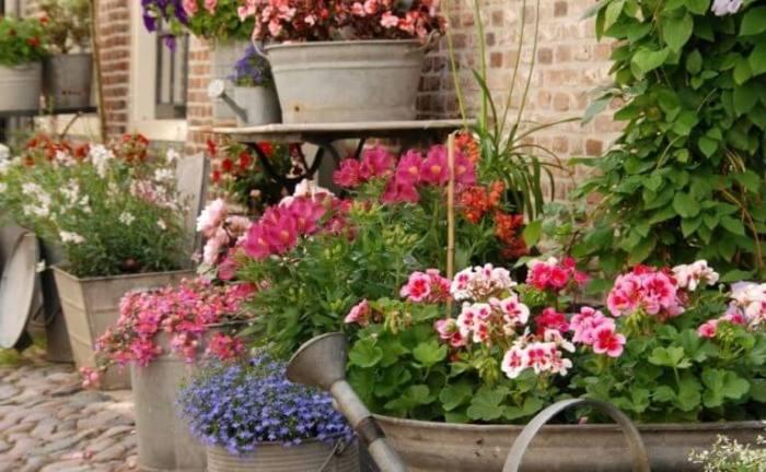 Использовав старую оцинкованную посуду, можно устроить настоящий цветник у себя перед домом.