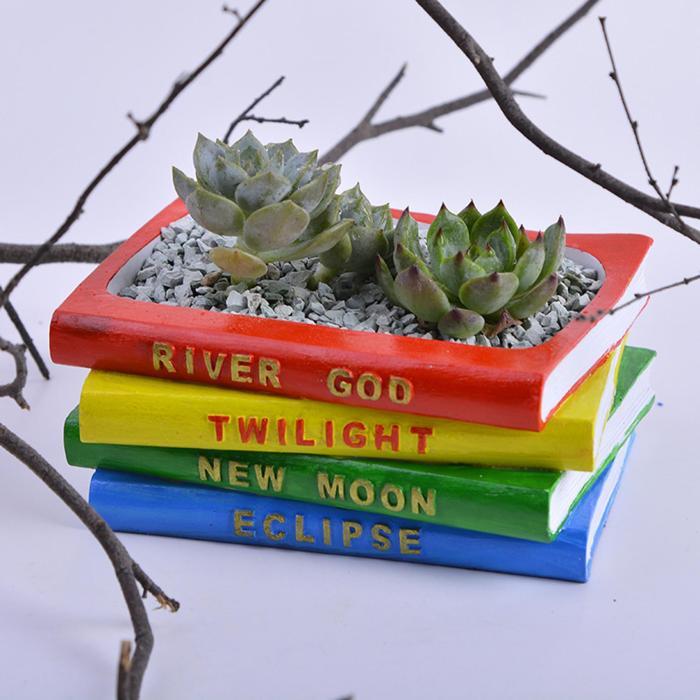 «Книжные» горшки для кактусов и суккулентов.