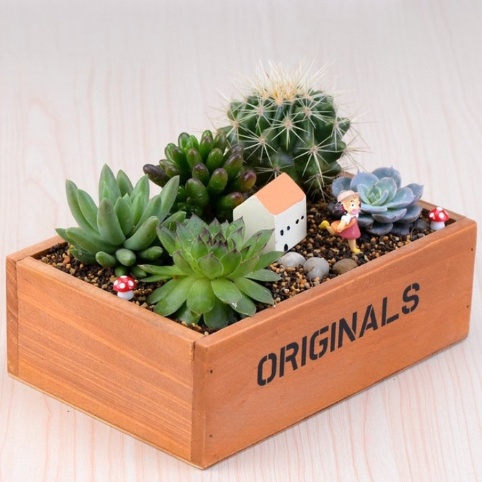 Деревянный чудо-ящик – оригинальное решение.
