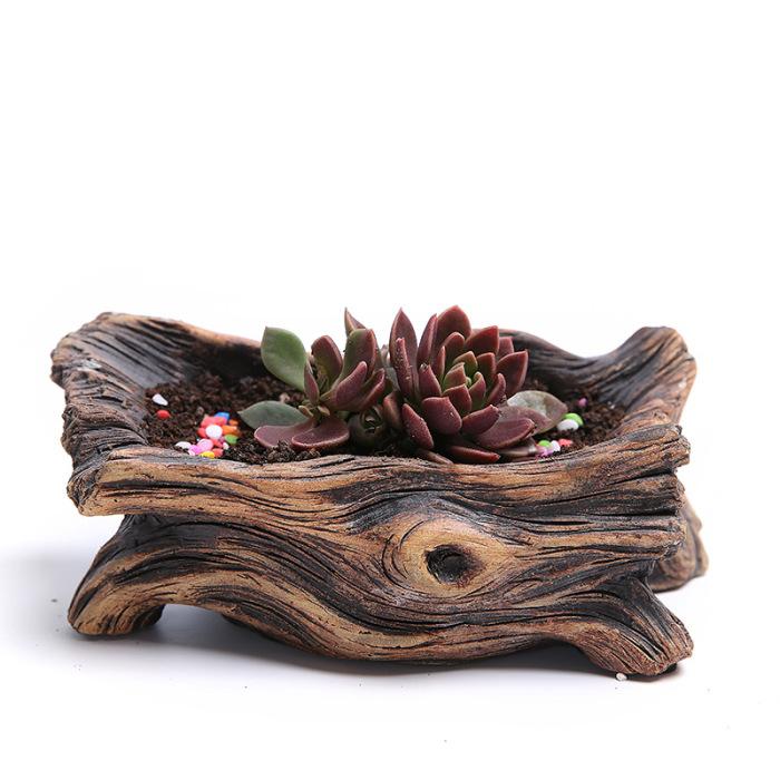 Так же в качестве горшков для кактусов и суккулентов можно использовать настоящие или декоративные коряги.