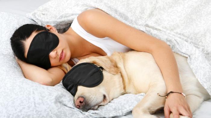 Сон укрепляет иммунитет. \ Фото: glavred.info.