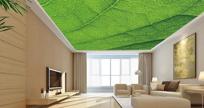 Оклеенный обоями цвета шалфея потолок для сдержанного и умиротворяющего интерьера, идеальный вариант для людей уверенных в себе и своём вкусе.