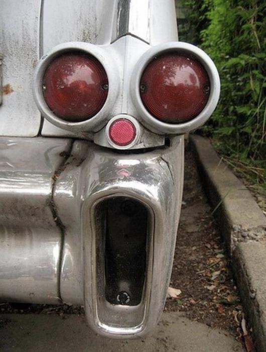 И обалдел. \ Фото: reddit.com.