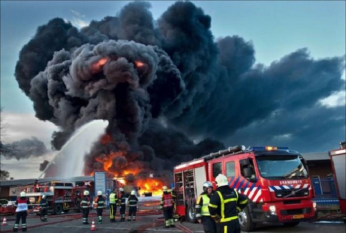 Огненный монстр доберётся и до тебя! \ Фото: humordointerior.com.br.