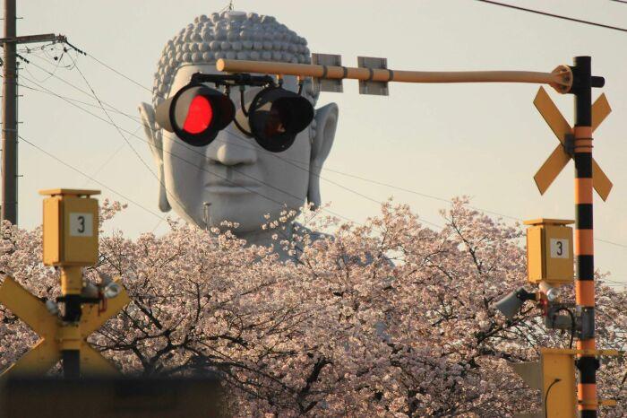 У Будды всегда всё под контролем. \ Фото: pinterest.jp.