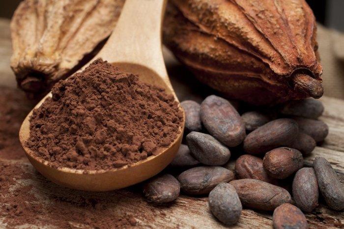 Какао бобы и какао порошок. \ Фото: royal-forest.org.