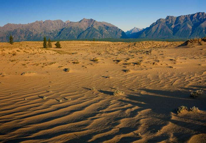 Чарские пески. \ Фото: ufs-online.ru.