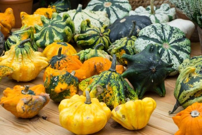 Фантастически красивые патиссоны. \ Фото: chefmarket.ru.