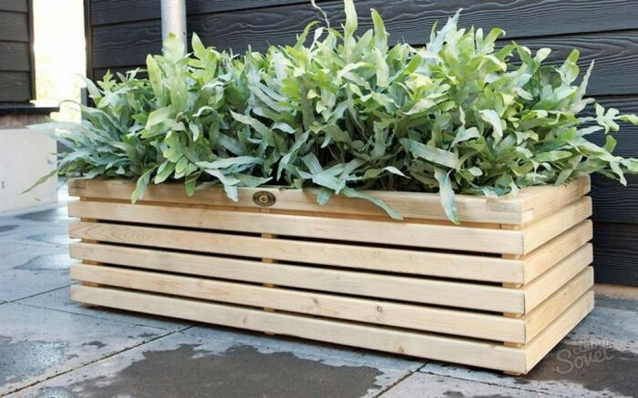 Кашпо для растений. \ Фото: pinterest.ru.