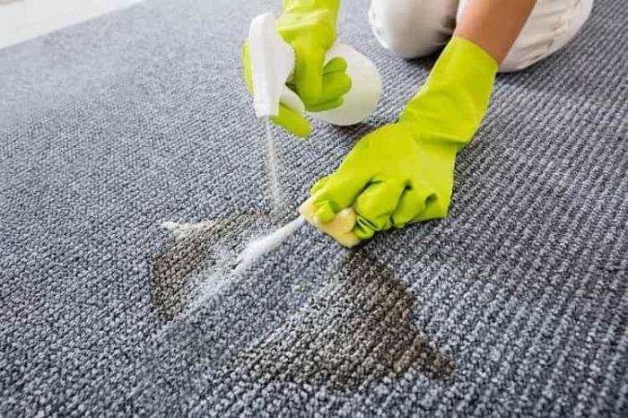 Выводим пятна с ковров. \ Фото: chistimvse.ru.
