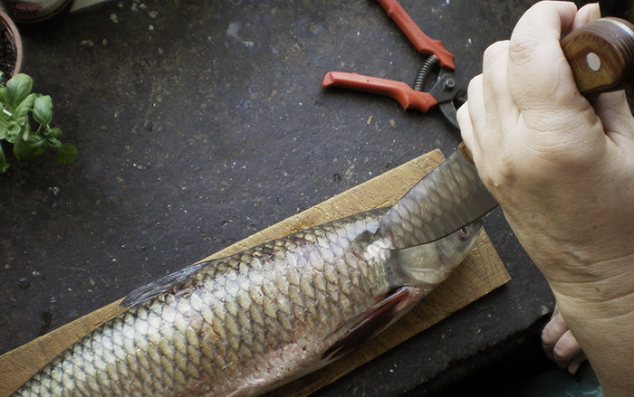 Как снять чешую с рыбы.