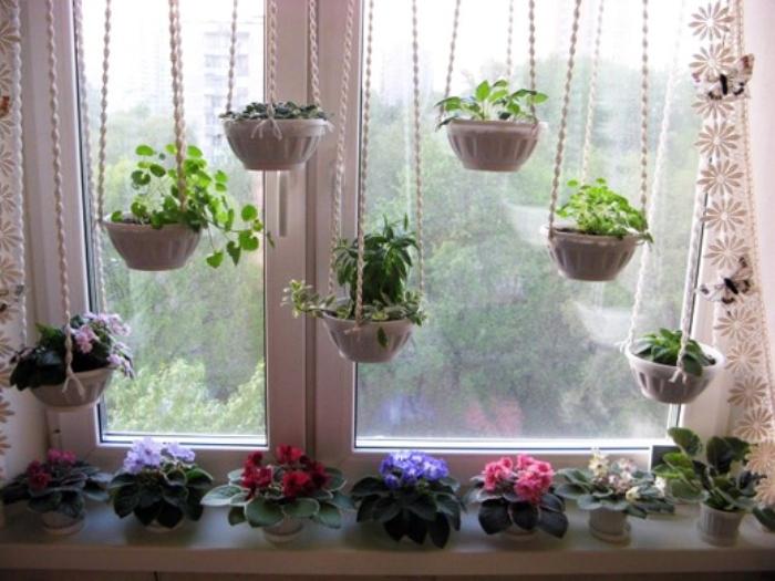Цветы на окнах отвлекут от неприглядного пейзажа.