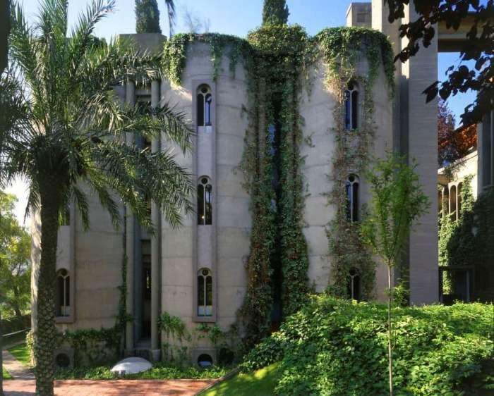 В парке много пальм, кипарисов, эвкалиптов и оливковых деревьев.