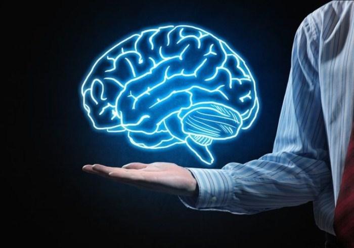 У человека чаще всего работают все отделы мозга.