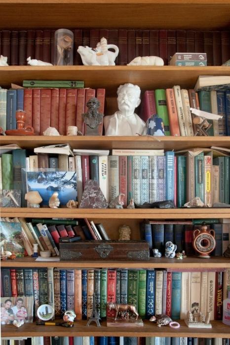 Книжные полки с многочисленными статуэтками.