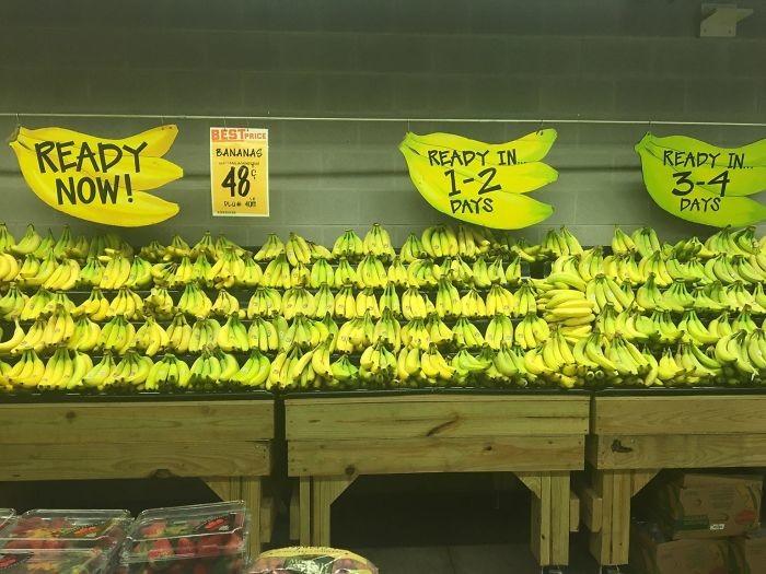 С таким прилавком становится очевидно, какие фрукты лучше выбрать. /Фото: i.pinimg.com