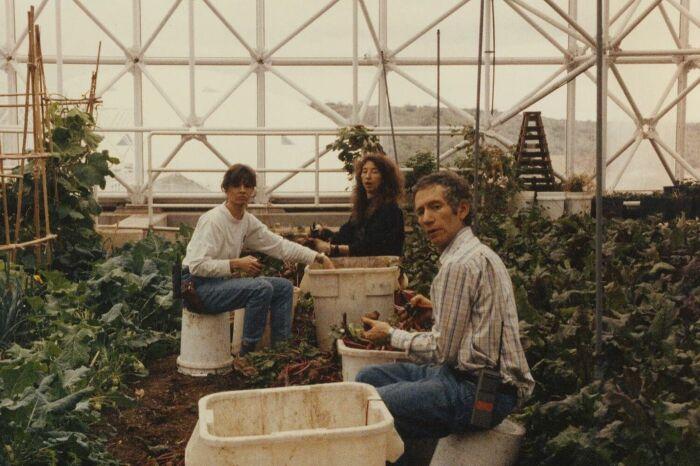 За урожай приходилось биться с насекомыми и вредителями. /Фото: inquirer.com