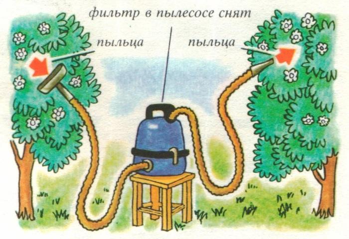 Пылесос-опылитель. /Фото: avatars.mds.yandex.net