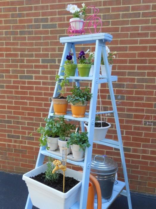 Деревянная стремянка – готовый к использованию стеллаж. /Фото: cdn.homedit.com