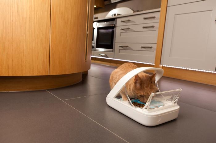 Отличное изобретение для комфортного кормления домашних питомцев. /Фото: surepetcare.com