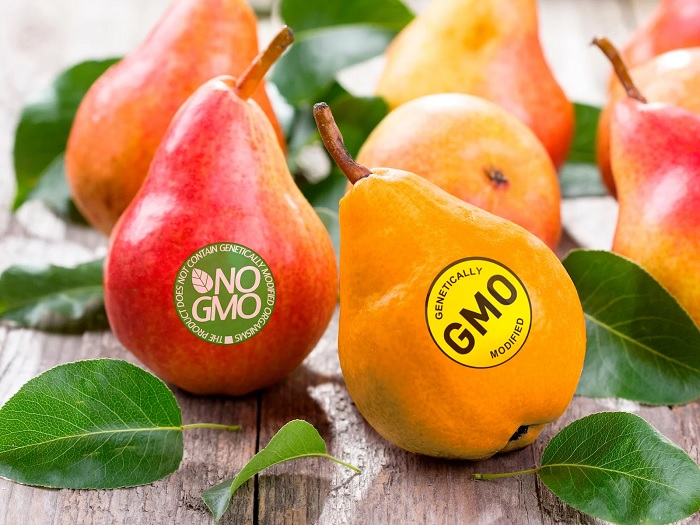 ГМО не так страшны, как их «малюют». /Фото: imagesvc.meredithcorp.io