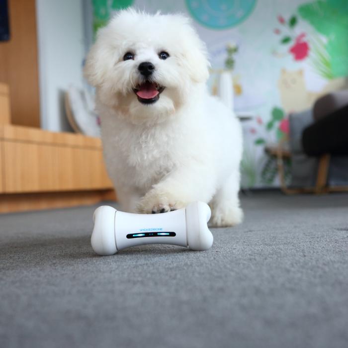 Питомец будет счастлив с такой забавной игрушкой. /Фото: cdn.shopify.com