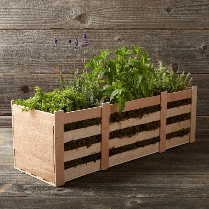 Один из способов красивой посадки растений. /Фото: thegreenhead.com