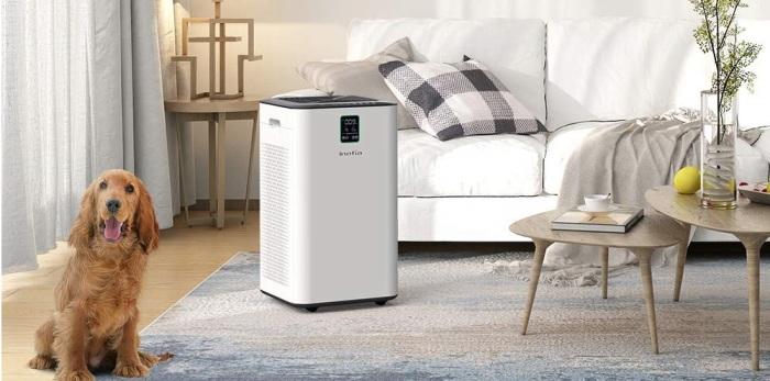 Очиститель воздуха будет полезен в доме с животными. /Фото: smartsmartersmartest.com