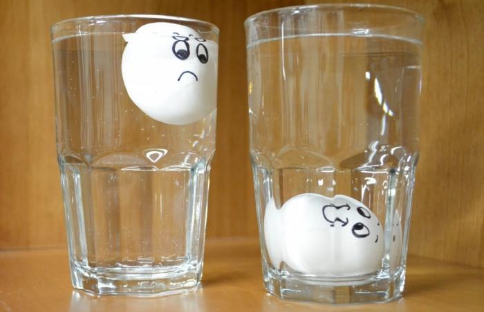 Держаться на плаву - плохо для яиц. /Фото: fb.ru