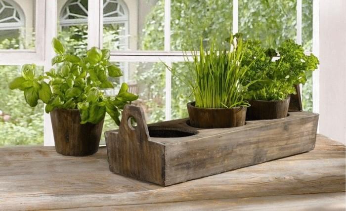 Полезное питание можно выращивать прямо на своем подоконнике. /Фото: fashionblog.com.ua