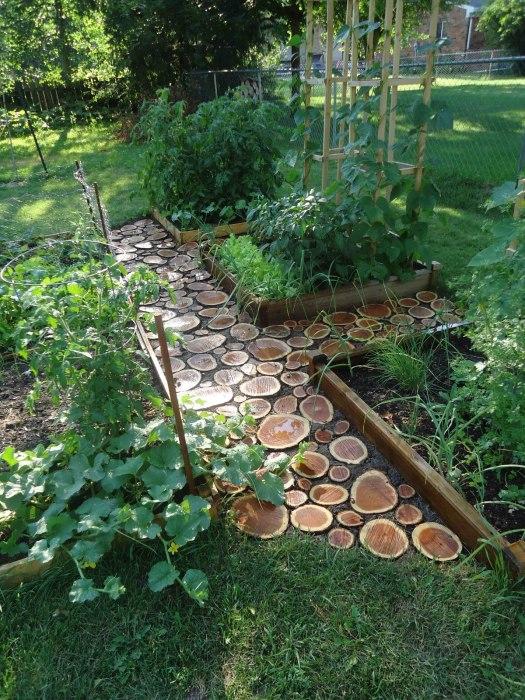 Что может смотреться более органично на дачном участке, чем дерево? /Фото: greenmoxie.com