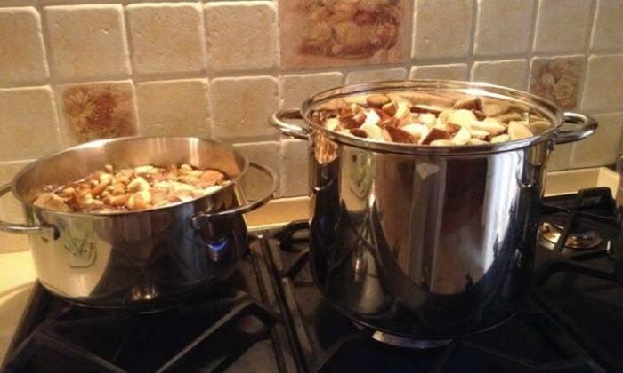 Способ приготовления зависит от конкретного гриба. /Фото: lesnik.life