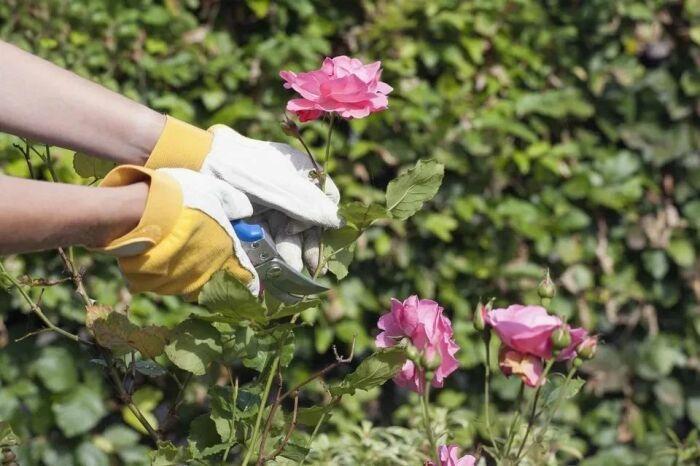 Завершающие штрихи работы также немаловажны. /Фото: dingyue.ws.126.net