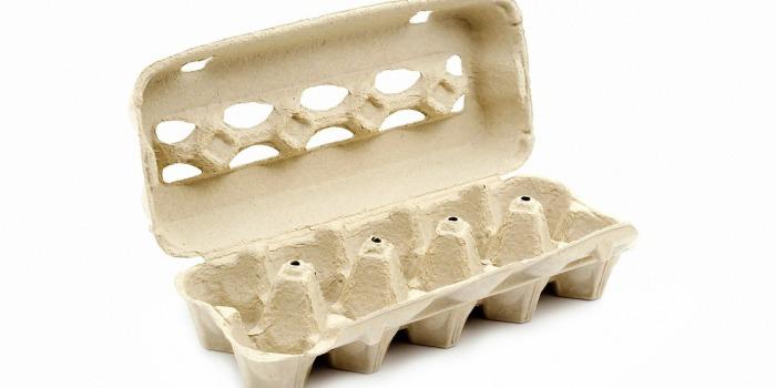 То, что обычно отправляется в мусорное ведро, способно пригодиться при готовке. /Фото: mb.web.sapo.io